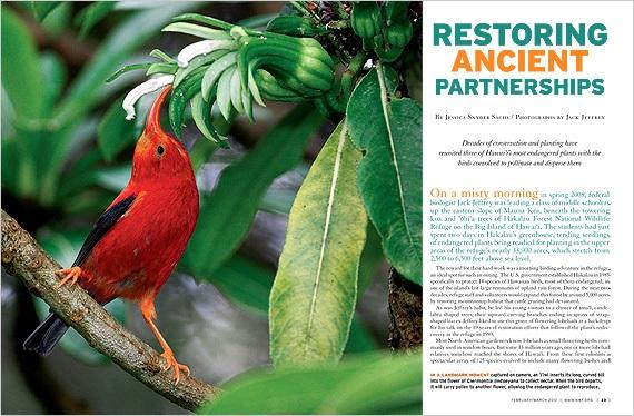 Restoring Ancient Partnerships opening spread.jpg