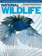 Thumbnail image for Thumbnail image for National_Wildlife_Cover_DJ10.jpg