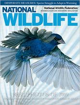 Thumbnail image for Thumbnail image for National_Wildlife_Cover_DJ10.jpg