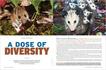 Biodiversity-NWopener.jpg
